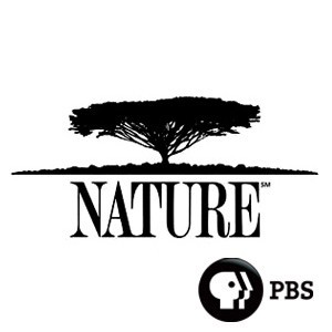 NATURE___PBS.png